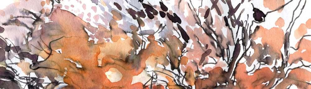 Frosty sunrise - Watercolour, Maxine Dodd