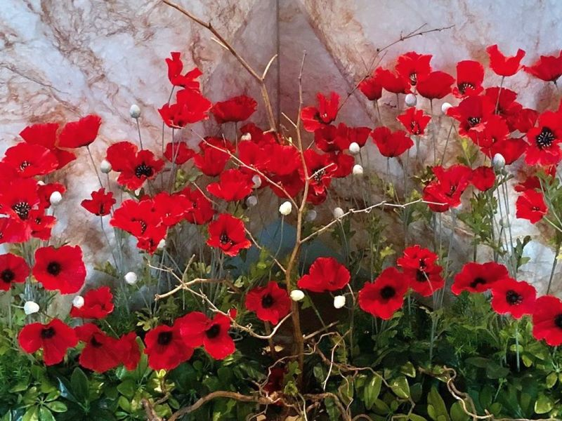 Remembrance altar -Leicester Cathedra-detail